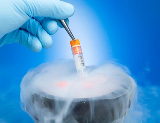 Криоконсервация эмбрионов и яйцеклеток